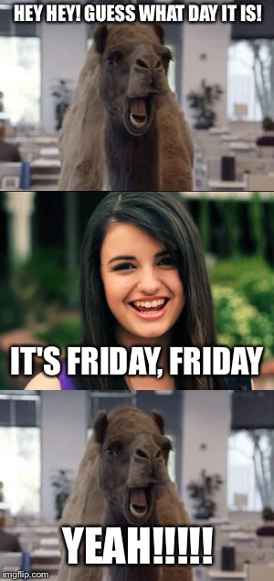 Friday Camel | HEY HEY! GUESS WHAT DAY IT IS! IT'S FRIDAY, FRIDAY YEAH!!!!! | image tagged in friday,hump day camel,rebecca black | made w/ Imgflip meme maker