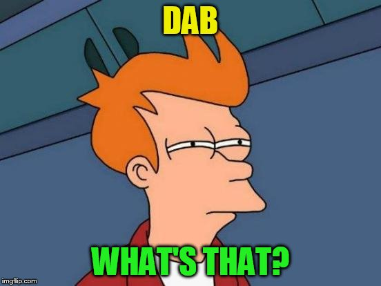 Futurama Fry Meme | DAB WHAT'S THAT? | image tagged in memes,futurama fry | made w/ Imgflip meme maker
