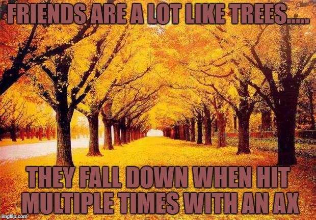 Autumn trees | FRIENDS ARE A LOT LIKE TREES..... THEY FALL DOWN WHEN HIT MULTIPLE TIMES WITH AN AX | image tagged in friends,trees,funny,memes,funny memes | made w/ Imgflip meme maker
