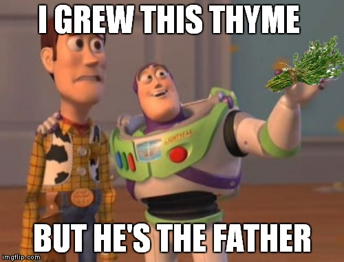 X, X Everywhere Meme | I GREW THIS THYME BUT HE'S THE FATHER | image tagged in memes,x,x everywhere,x x everywhere | made w/ Imgflip meme maker