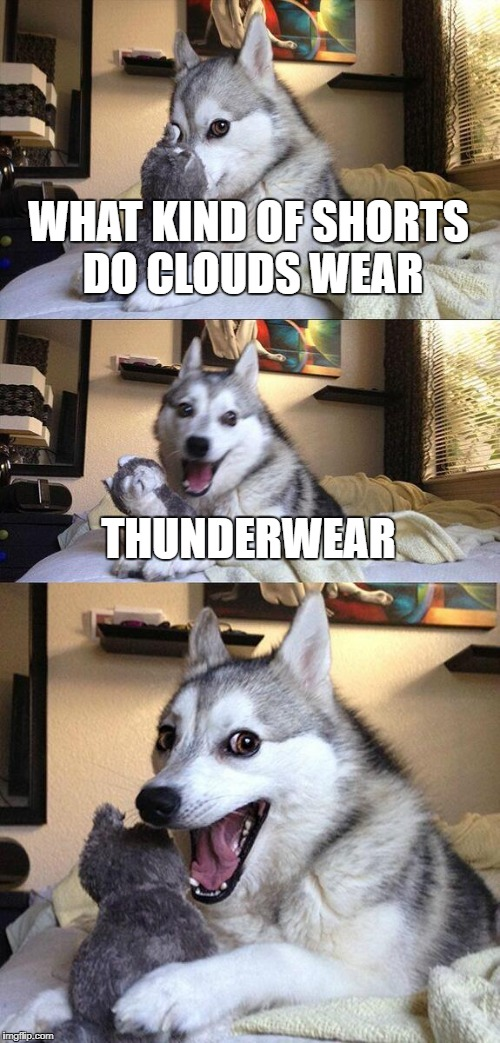 Bad Pun Dog Meme | WHAT KIND OF SHORTS DO CLOUDS WEAR THUNDERWEAR | image tagged in memes,bad pun dog | made w/ Imgflip meme maker