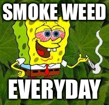 Weed | SMOKE WEED EVERYDAY | image tagged in weed | made w/ Imgflip meme maker