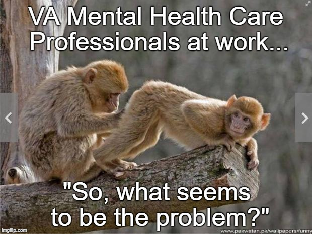 "VA Mental Health Care Professionals at work... ""So, what seems to be the problem?"" 