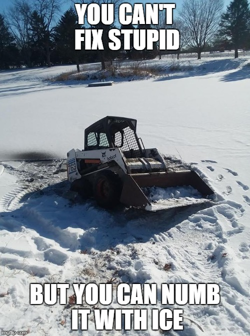 You can't fix stupid | YOU CAN'T FIX STUPID BUT YOU CAN NUMB IT WITH ICE | image tagged in funny,stupid,snow,bobcat | made w/ Imgflip meme maker