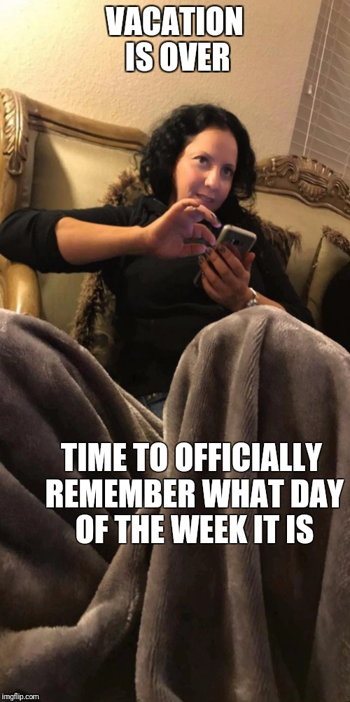 VACATION IS OVER TIME TO OFFICIALLY REMEMBER WHAT DAY OF THE WEEK IT IS | image tagged in sandra2joli | made w/ Imgflip meme maker