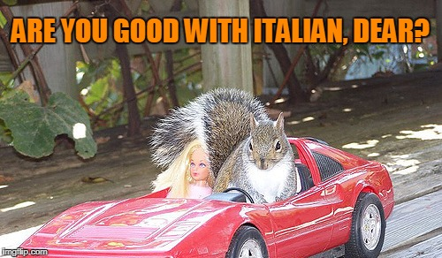 ARE YOU GOOD WITH ITALIAN, DEAR? | made w/ Imgflip meme maker