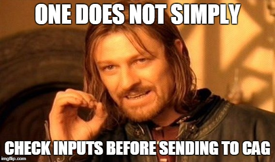 One Does Not Simply Meme | ONE DOES NOT SIMPLY CHECK INPUTS BEFORE SENDING TO CAG | image tagged in memes,one does not simply | made w/ Imgflip meme maker