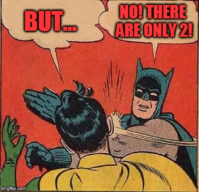Batman Slapping Robin Meme | BUT... NO! THERE ARE ONLY 2! | image tagged in memes,batman slapping robin | made w/ Imgflip meme maker