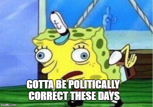 Mocking Spongebob Meme | GOTTA BE POLITICALLY CORRECT THESE DAYS | image tagged in memes,mocking spongebob | made w/ Imgflip meme maker