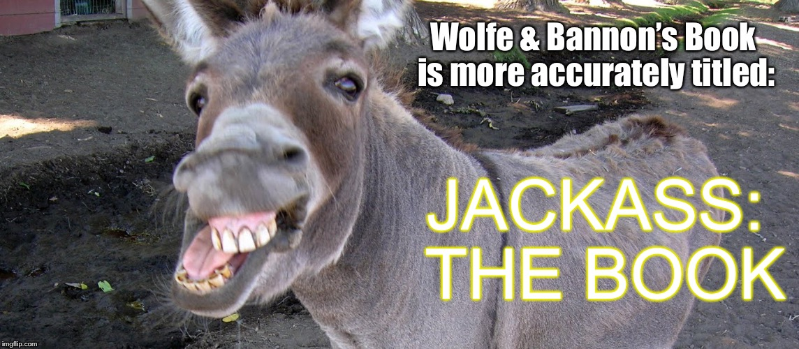 Even good fiction keeps the story line consistent  | JACKASS: THE BOOK | image tagged in memes,steve bannon,wolfe,fire and fury,jackass the book | made w/ Imgflip meme maker
