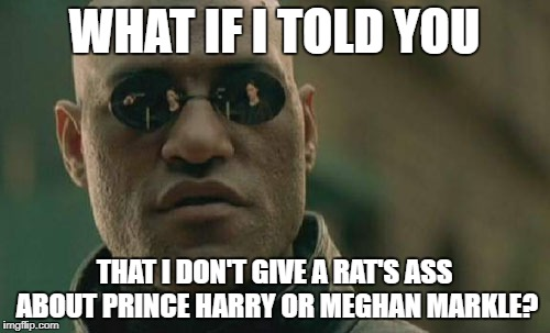 Matrix Morpheus Meme | WHAT IF I TOLD YOU THAT I DON'T GIVE A RAT'S ASS ABOUT PRINCE HARRY OR MEGHAN MARKLE? | image tagged in memes,matrix morpheus | made w/ Imgflip meme maker