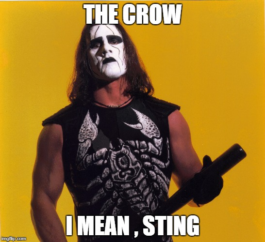 WCW days gone by. | THE CROW I MEAN , STING | image tagged in wcw,pro wrestling,sting | made w/ Imgflip meme maker