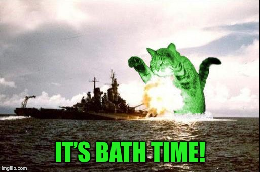 RayCatzilla | IT'S BATH TIME! | image tagged in raycatzilla | made w/ Imgflip meme maker