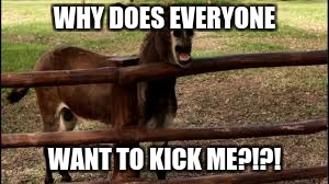WHY DOES EVERYONE WANT TO KICK ME?!?! | image tagged in donkey,donald trump,kicking ass | made w/ Imgflip meme maker