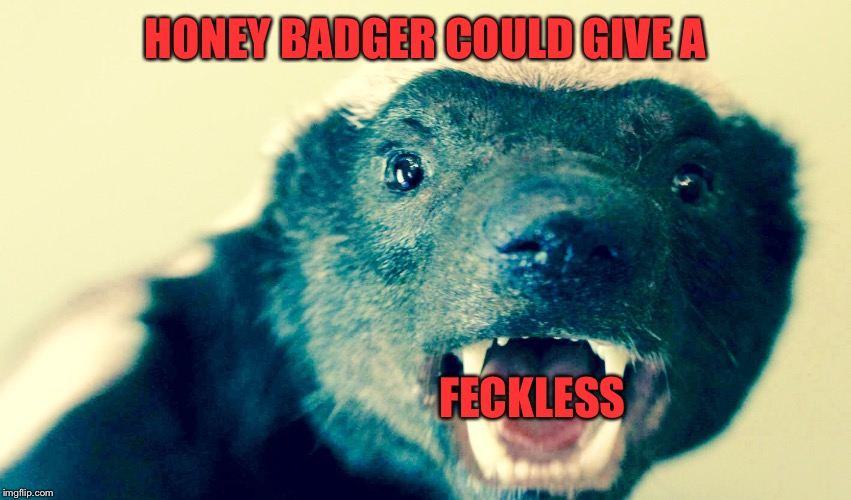 HONEY BADGER COULD GIVE A FECKLESS | made w/ Imgflip meme maker