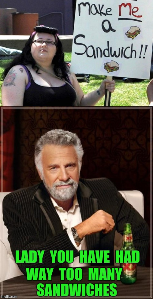 The most feminist sandwich in the world | LADY  YOU  HAVE  HAD WAY  TOO  MANY  SANDWICHES | image tagged in make me a sandwich,feminist,feminism,the most interesting man in the world,fat | made w/ Imgflip meme maker
