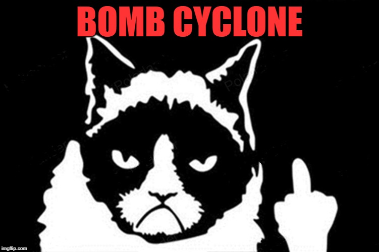 Grumpy Cat Flipping The Bird | BOMB CYCLONE | image tagged in grumpy cat flipping the bird | made w/ Imgflip meme maker