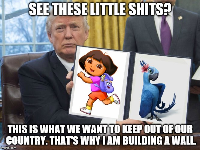 Trump keeping Dora and Jewel out by Building a Wall. | SEE THESE LITTLE SHITS? THIS IS WHAT WE WANT TO KEEP OUT OF OUR COUNTRY. THAT'S WHY I AM BUILDING A WALL. | image tagged in donald trump,dora the explorer,rio,jewel,border wall | made w/ Imgflip meme maker
