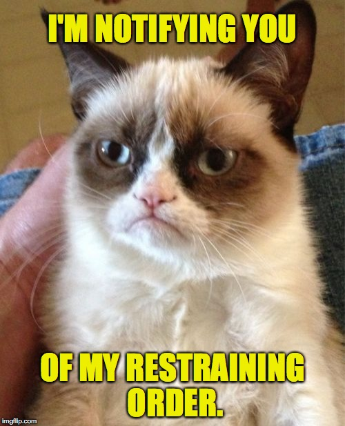 You like notifications? | I'M NOTIFYING YOU OF MY RESTRAINING ORDER. | image tagged in memes,grumpy cat,notifications | made w/ Imgflip meme maker