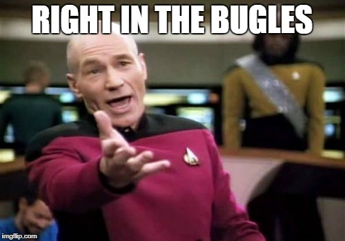 Picard Wtf Meme | RIGHT IN THE BUGLES | image tagged in memes,picard wtf | made w/ Imgflip meme maker