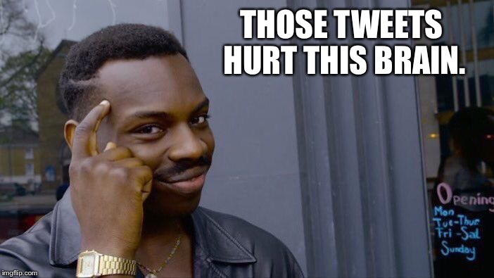 Roll Safe Think About It Meme | THOSE TWEETS HURT THIS BRAIN. | image tagged in memes,roll safe think about it | made w/ Imgflip meme maker