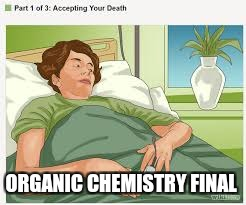 Accepting Your Death | ORGANIC CHEMISTRY FINAL | image tagged in accepting your death | made w/ Imgflip meme maker
