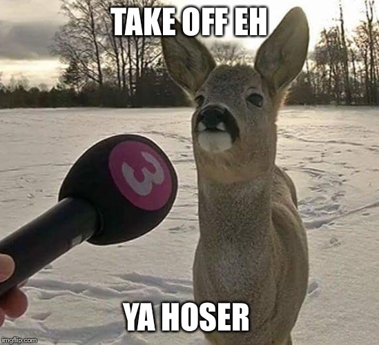 TAKE OFF EH YA HOSER | made w/ Imgflip meme maker