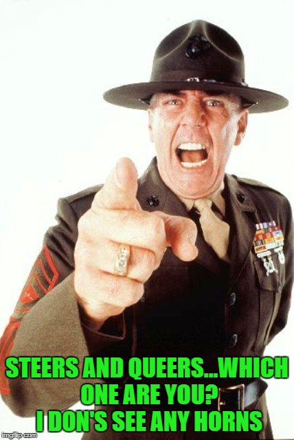 STEERS AND QUEERS...WHICH ONE ARE YOU? I DON'S SEE ANY HORNS | made w/ Imgflip meme maker