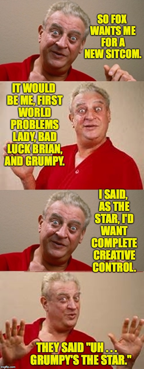 "I don't get no respect! | SO FOX WANTS ME FOR A NEW SITCOM. THEY SAID ""UH . . .    GRUMPY'S THE STAR."" IT WOULD BE ME, FIRST WORLD PROBLEMS LADY, BAD LUCK BRIAN, AND  
