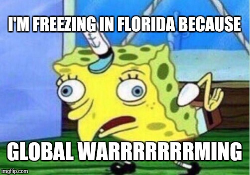 Mocking Spongebob Meme | I'M FREEZING IN FLORIDA BECAUSE GLOBAL WARRRRRRRMING | image tagged in memes,mocking spongebob | made w/ Imgflip meme maker