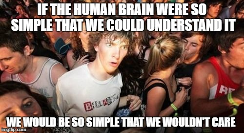 Sudden Clarity Clarence Meme | IF THE HUMAN BRAIN WERE SO SIMPLE THAT WE COULD UNDERSTAND IT WE WOULD BE SO SIMPLE THAT WE WOULDN'T CARE | image tagged in memes,sudden clarity clarence,brain | made w/ Imgflip meme maker