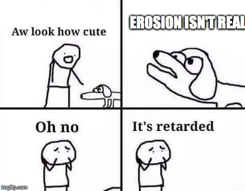 retarded dog | EROSION ISN'T REAL | image tagged in retarded dog | made w/ Imgflip meme maker