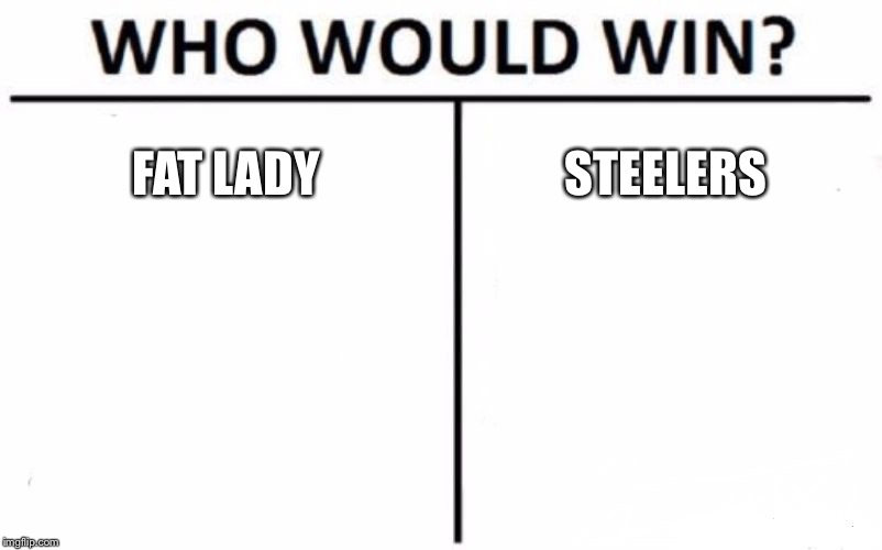 Who Would Win? Meme | FAT LADY STEELERS | image tagged in memes,who would win | made w/ Imgflip meme maker