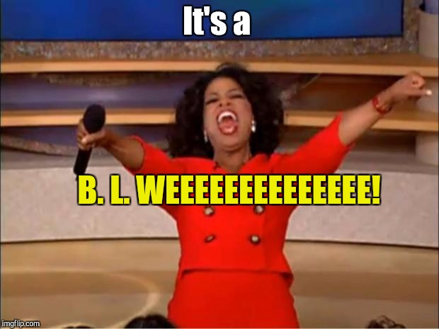 Oprah You Get A Meme | It's a B. L. WEEEEEEEEEEEEEE! | image tagged in memes,oprah you get a | made w/ Imgflip meme maker