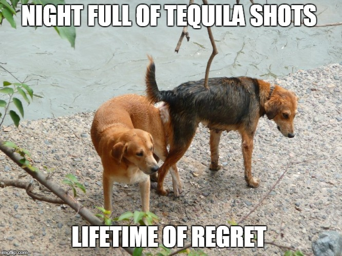 poor decisions | NIGHT FULL OF TEQUILA SHOTS LIFETIME OF REGRET | image tagged in drinking,tequila,regrets | made w/ Imgflip meme maker