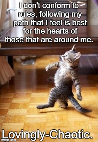Cool Cat Stroll Meme | I don't conform to rules, following my path that I feel is best for the hearts of those that are around me. Lovingly-Chaotic. | image tagged in memes,cool cat stroll | made w/ Imgflip meme maker