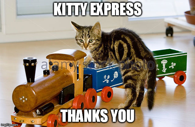KITTY EXPRESS THANKS YOU | made w/ Imgflip meme maker