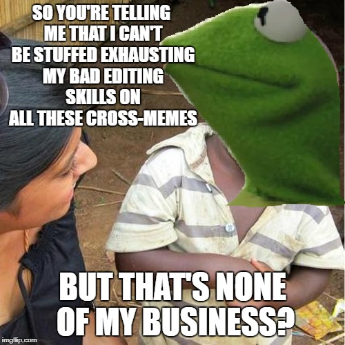 As you can tell, my editing is bad. But hey, at least I'm creative with the cross-meming!!! | SO YOU'RE TELLING ME THAT I CAN'T BE STUFFED EXHAUSTING MY BAD EDITING SKILLS ON ALL THESE CROSS-MEMES BUT THAT'S NONE OF MY BUSINESS? | image tagged in memes,third world skeptical kid,kermit the frog,but thats none of my business,dank memes,funny | made w/ Imgflip meme maker