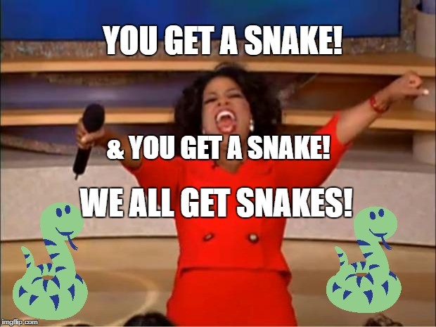 Oprah You Get A Meme | YOU GET A SNAKE! & YOU GET A SNAKE! WE ALL GET SNAKES! | image tagged in memes,oprah you get a | made w/ Imgflip meme maker