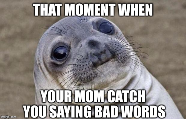 Awkward Moment Sealion Meme | THAT MOMENT WHEN YOUR MOM CATCH YOU SAYING BAD WORDS | image tagged in memes,awkward moment sealion | made w/ Imgflip meme maker