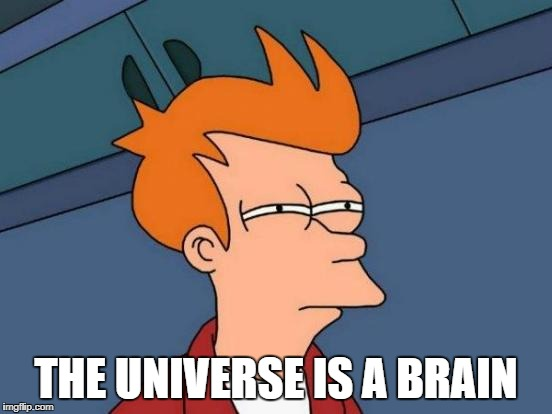 Futurama Fry Meme | THE UNIVERSE IS A BRAIN | image tagged in memes,futurama fry | made w/ Imgflip meme maker