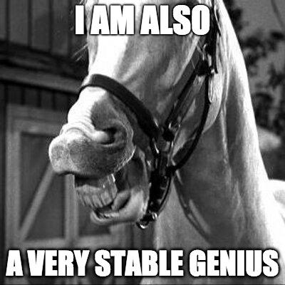 I AM ALSO A VERY STABLE GENIUS | image tagged in mr ed | made w/ Imgflip meme maker