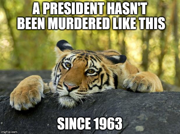 Confession Tiger | A PRESIDENT HASN'T BEEN MURDERED LIKE THIS SINCE 1963 | image tagged in confession tiger,AdviceAnimals | made w/ Imgflip meme maker