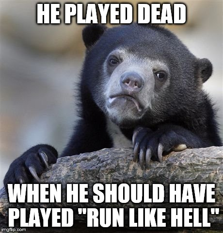 "Confession Bear Meme | HE PLAYED DEAD WHEN HE SHOULD HAVE PLAYED ""RUN LIKE HELL"" 