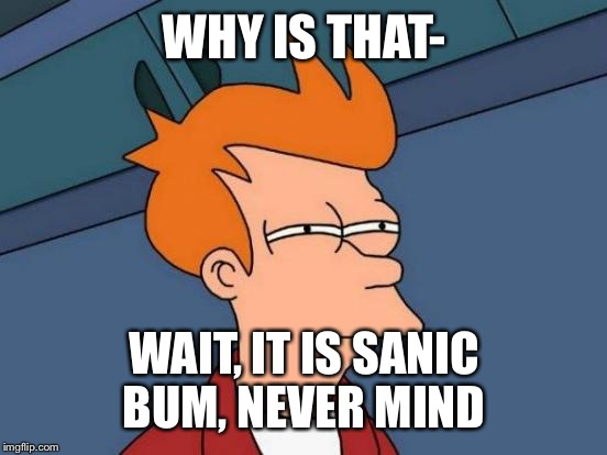 Futurama Fry Meme | WHY IS THAT- WAIT, IT IS SANIC BUM, NEVER MIND | image tagged in memes,futurama fry | made w/ Imgflip meme maker