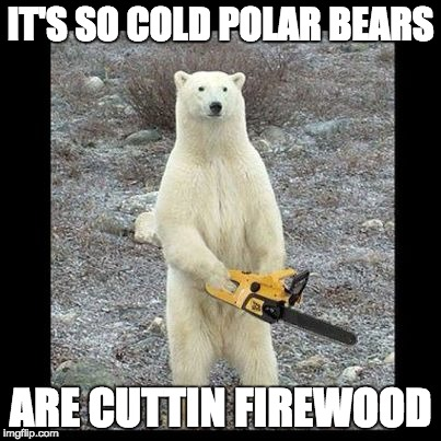 Chainsaw Bear | IT'S SO COLD POLAR BEARS ARE CUTTIN FIREWOOD | image tagged in memes,chainsaw bear | made w/ Imgflip meme maker