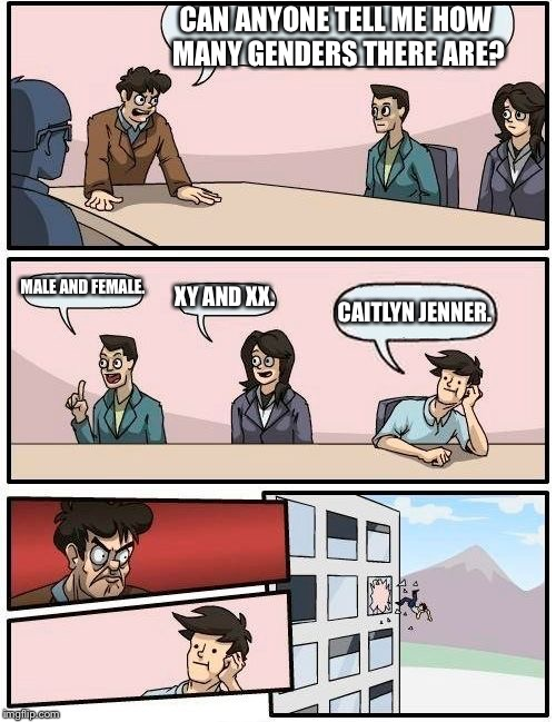 Boardroom Meeting Suggestion Meme | CAN ANYONE TELL ME HOW MANY GENDERS THERE ARE? MALE AND FEMALE. XY AND XX. CAITLYN JENNER. | image tagged in memes,boardroom meeting suggestion | made w/ Imgflip meme maker