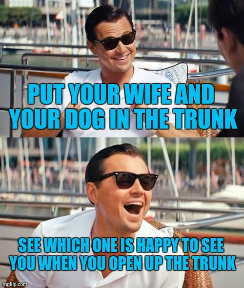 Leonardo Dicaprio Wolf Of Wall Street Meme | PUT YOUR WIFE AND YOUR DOG IN THE TRUNK SEE WHICH ONE IS HAPPY TO SEE YOU WHEN YOU OPEN UP THE TRUNK | image tagged in memes,leonardo dicaprio wolf of wall street | made w/ Imgflip meme maker