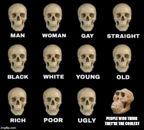 idiot skull | PEOPLE WHO THINK THEY'RE THE COOLEST | image tagged in idiot skull | made w/ Imgflip meme maker