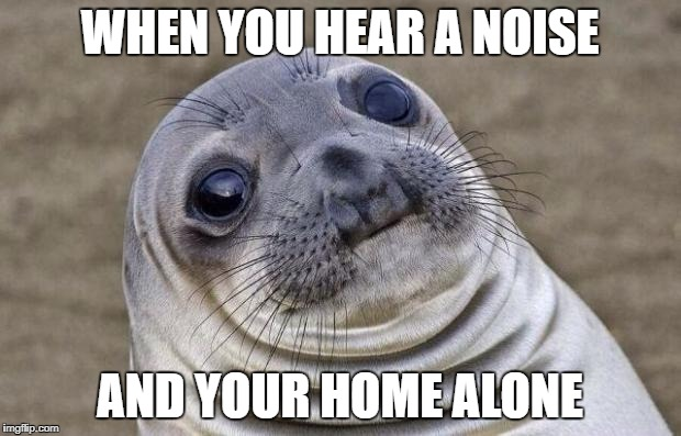 Awkward Moment Sealion Meme | WHEN YOU HEAR A NOISE AND YOUR HOME ALONE | image tagged in memes,awkward moment sealion | made w/ Imgflip meme maker